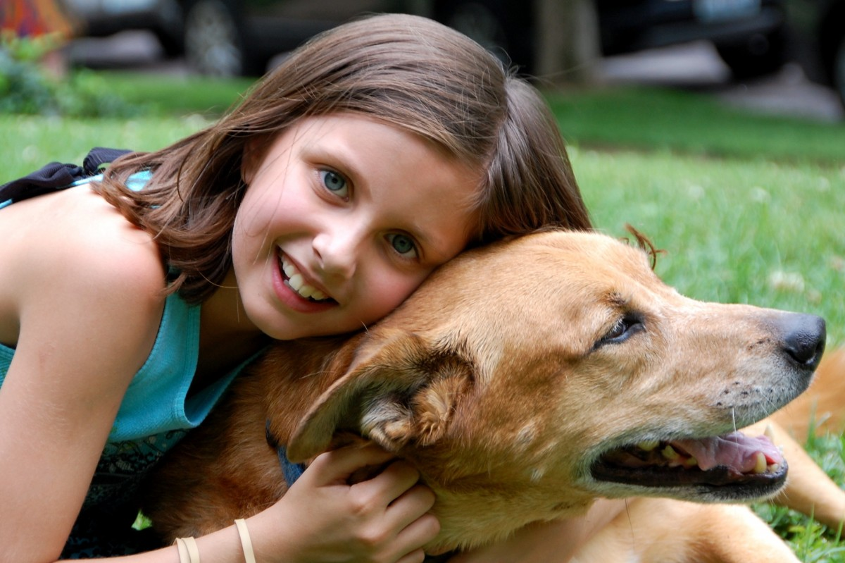Therapy Dogs ? A New Treatment for Childhood ADHD?